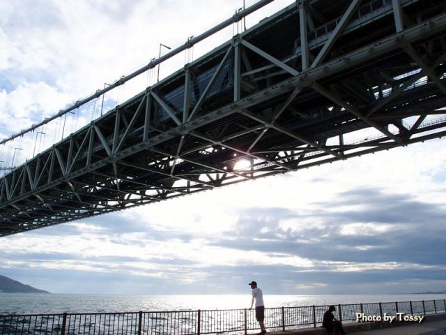 橋と海と人