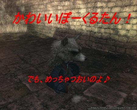 ぽーくる31