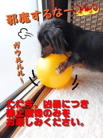 13-01-14_816.jpg
