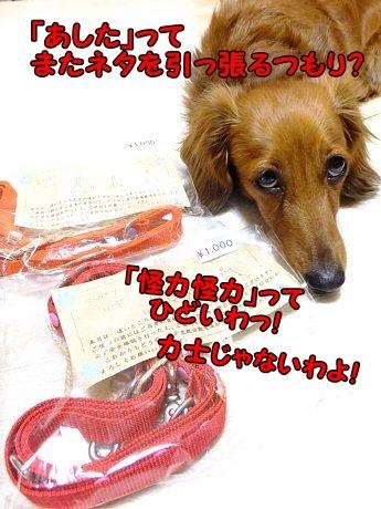 DSCF1408_20130530105158.jpg
