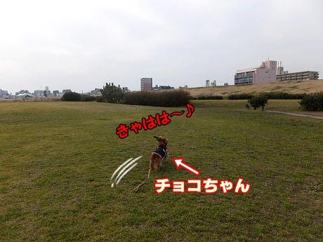 DSCF4868.jpg