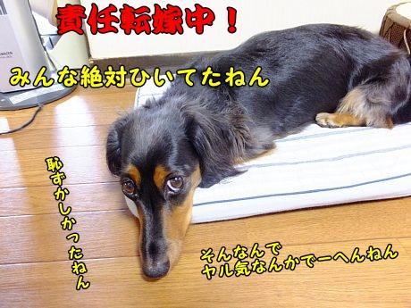 DSCF7499.jpg