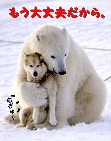 polar-bear-funny-dog-death-hug.jpeg