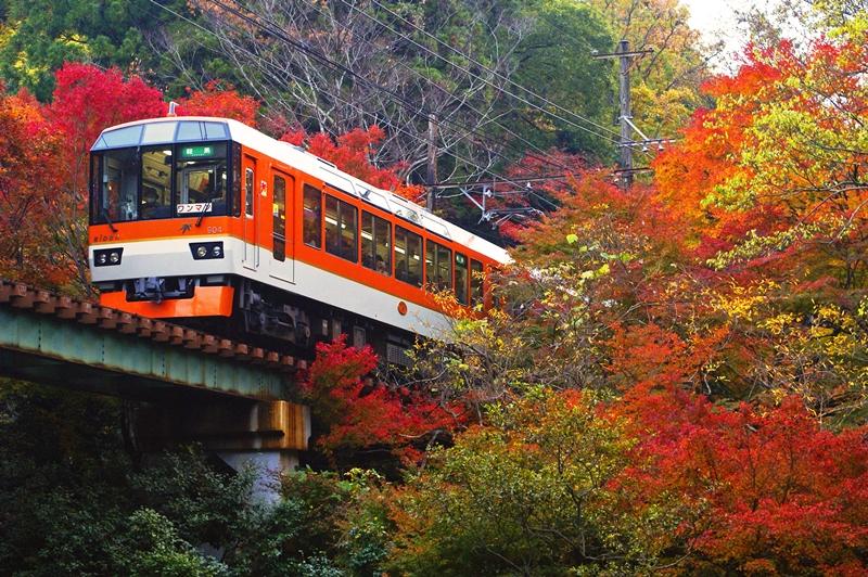 2014年11月17日 市原~二ノ瀬にて (1)