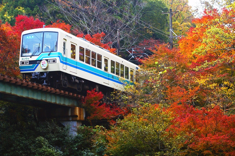 2014年11月17日 市原~二ノ瀬にて (2)