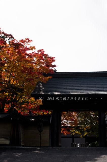 2012年 高野山・天徳院3