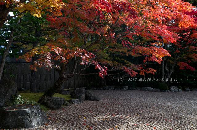 2012年 高野山・天徳院1