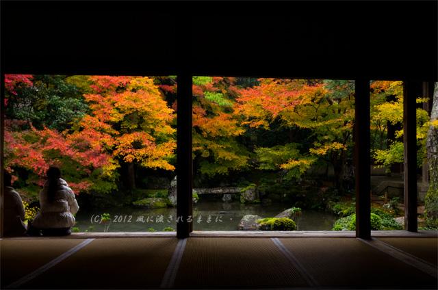 2012年 京都・蓮華寺 紅葉4