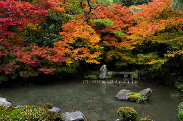 2012年 京都・蓮華寺 紅葉5