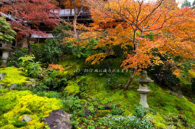 2012年瑠璃光院 瑠璃の庭紅葉11