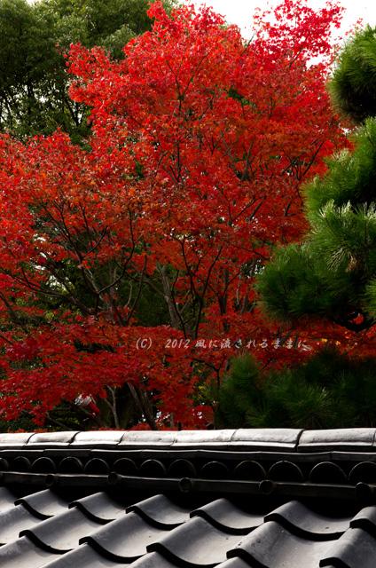 2012_zuisinnin_kouyou1