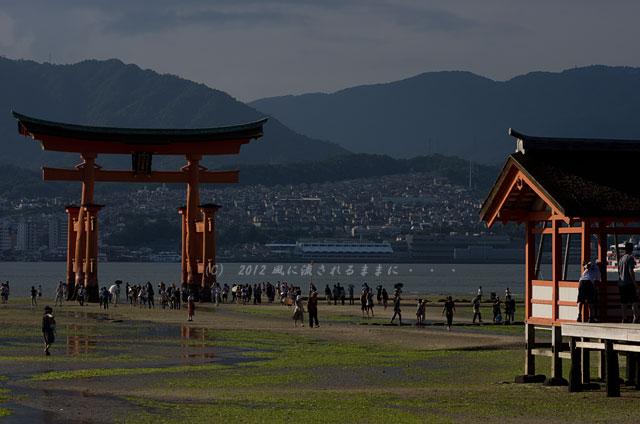 宮島・厳島神社7