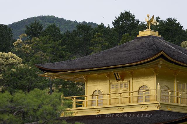 京都・金閣寺3