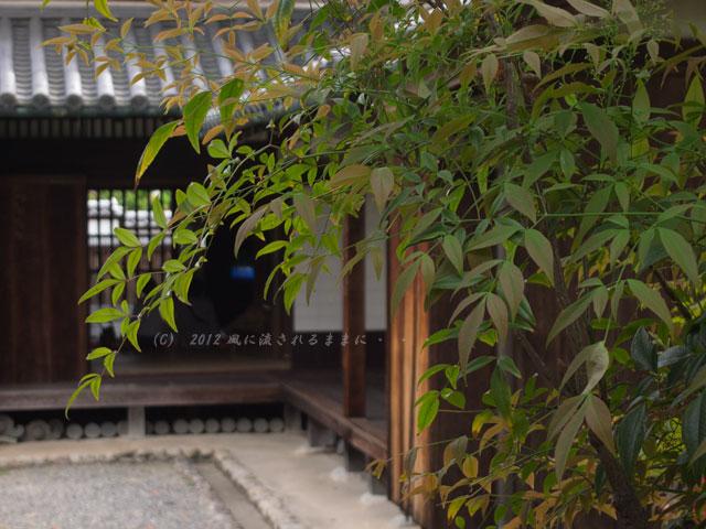 富田林 寺内町 旧杉山家住宅10