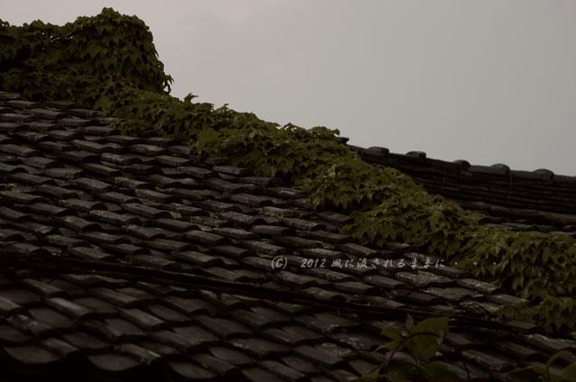 銀残しで撮る近江八幡の町並み2