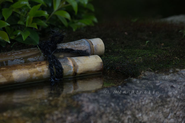 龍安寺 風景1