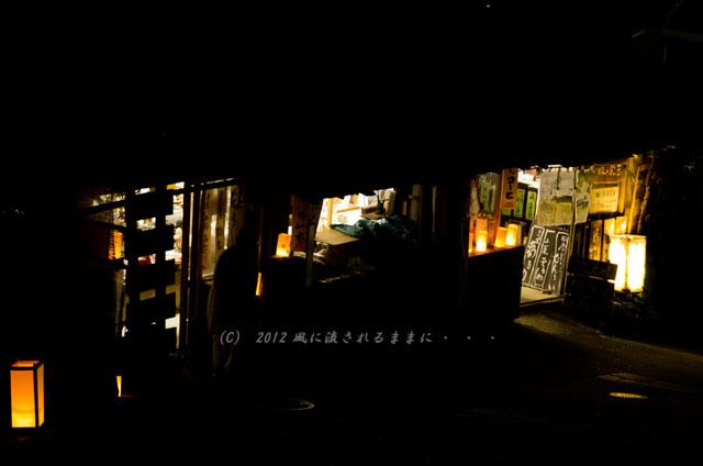 奈良・飛鳥光の回廊の風景6