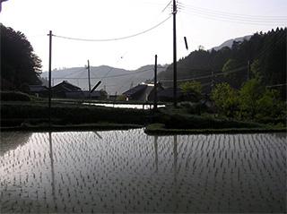 前川・レギーナ6