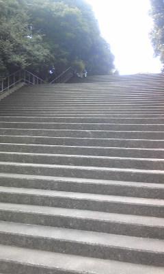 関大アイスアリーナ・階段 2
