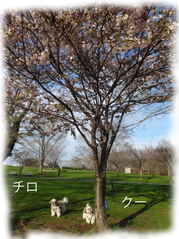 13-05-18_1131.jpg