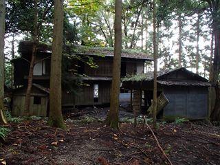 121027-145712-10.27矢岳 047_R