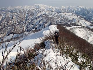 130505-155057-5.4-6茶畑山~芝倉山~高安山~猿倉山 114_R