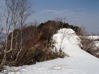 130506-073748-5.4-6茶畑山~芝倉山~高安山~猿倉山 145_R