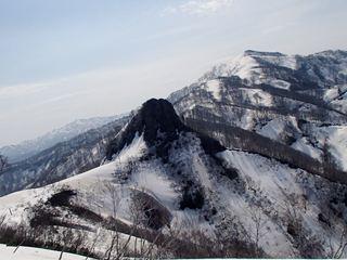 130506-085159-5.4-6茶畑山~芝倉山~高安山~猿倉山 159_R