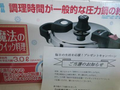 DSC_0100_convert_20130304150931.jpg