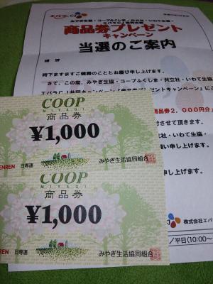DSC_0119_convert_20130328144239.jpg
