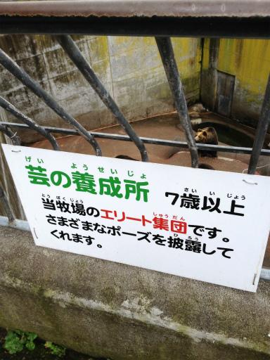 20121029_06.jpg