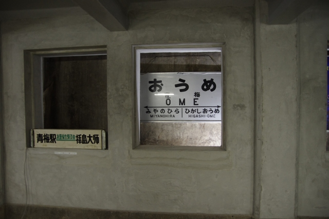 IMGP3594.jpg