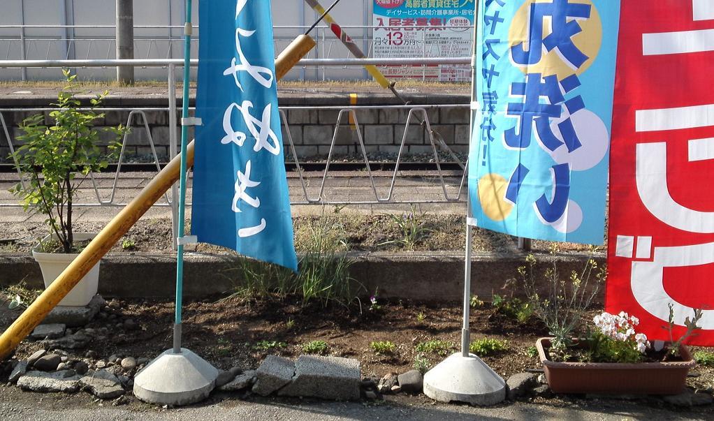 店前花壇・新 (5)
