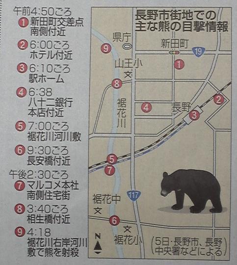 長野市に熊出没