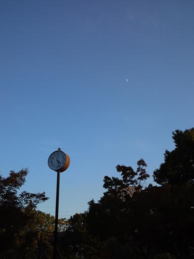 ポスティングの風景・辰巳公園 (7)