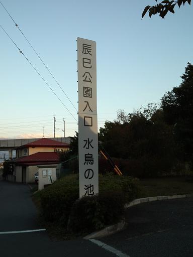 ポスティングの風景・辰巳公園 (9)