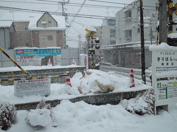 雪降り! (2)