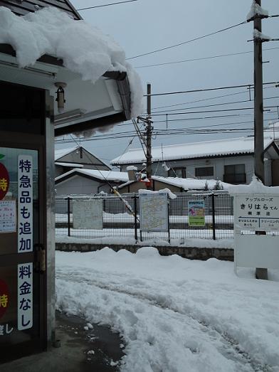 雪のアップルローズ前