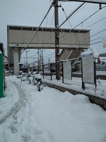 雪のアップルローズ前 (2)