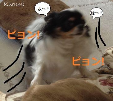 0924b_20120924150112.jpg