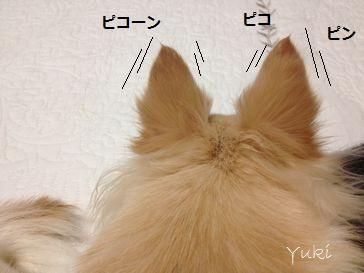 2_20121023160530.jpg