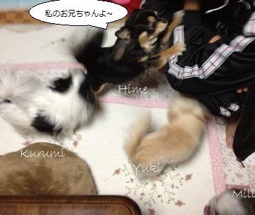 4_20121107162725.jpg