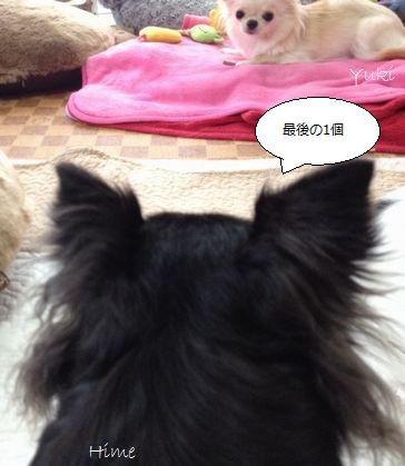 b1_20121109182750.jpg