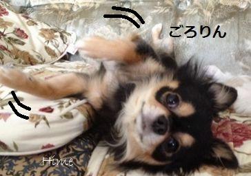 b7_20121020234138.jpg