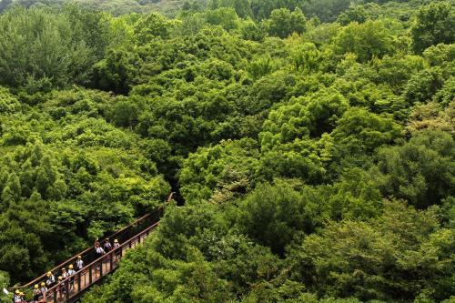 万博記念公園2_convert_20120625205641