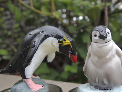 ペンギン_convert_20120727222147