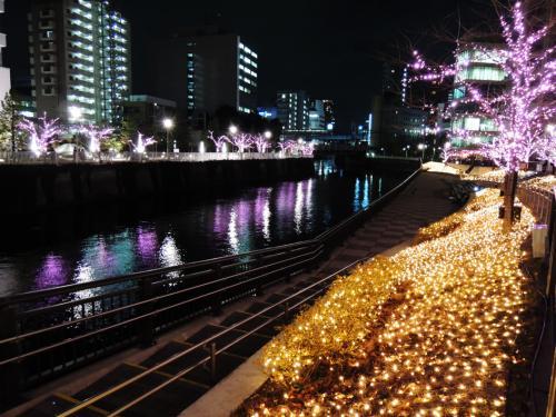 目黒川1218夜_convert_20121218234434