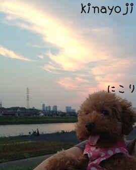 夕日きれい2