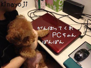 にゅうPC3