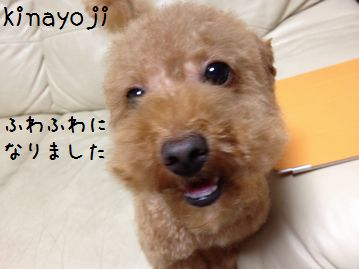 0923お風呂4